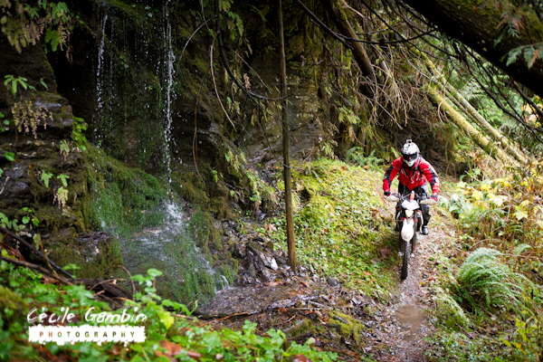 From an alpine setting to a tropical environment this ride had it all.